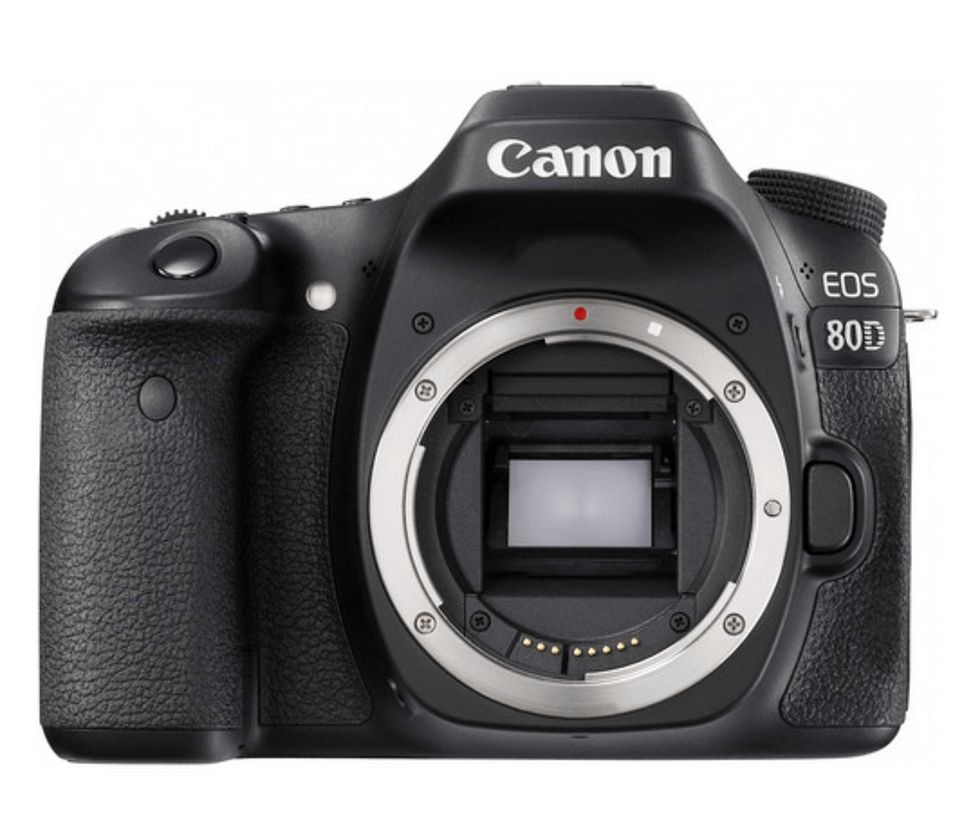 canon camera for food photography